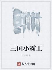 三国小霸王 作者:庄不周